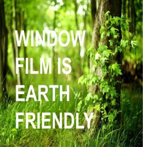 Earth Friendly-min
